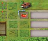 mi tierra-board