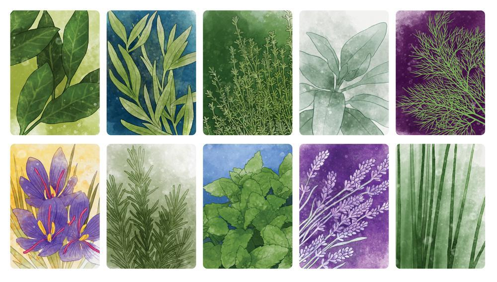 ks herbaceous-illus