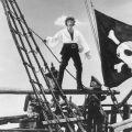 Tortuga 1667 - Le capitaine peut être fier de son jeu