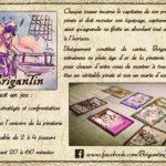 Brigantin – Ulule – le 22 janvier