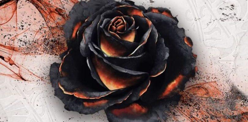 Jeu Black Rose Wars par Ludus Magnus - boite